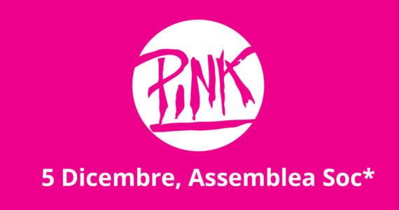 Assemblea soc* Circolo Pink